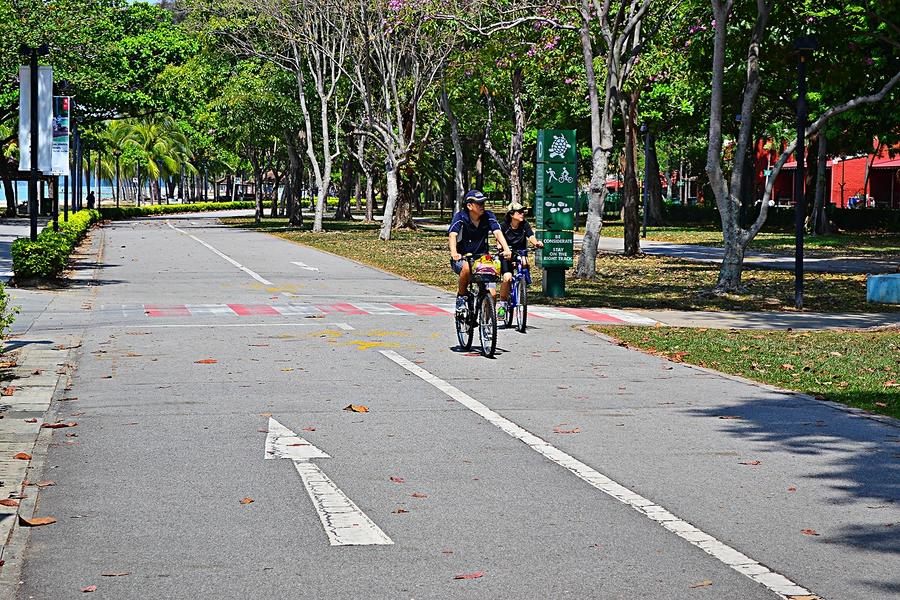 Велосипед менее популрен, но тоже широко распространен