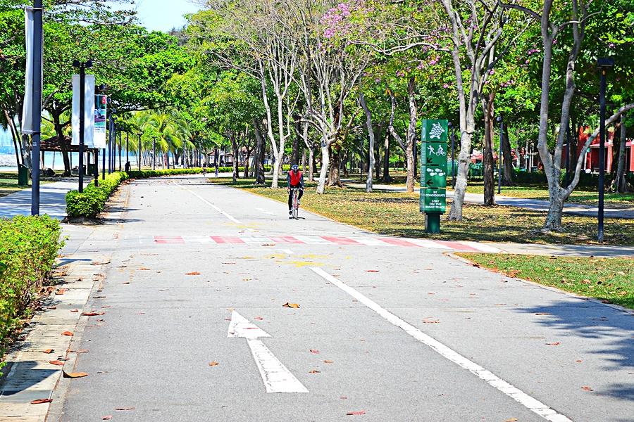 дорожка для велосипедистов в парке в Сингапуре
