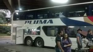 автобус фирмы Pluma