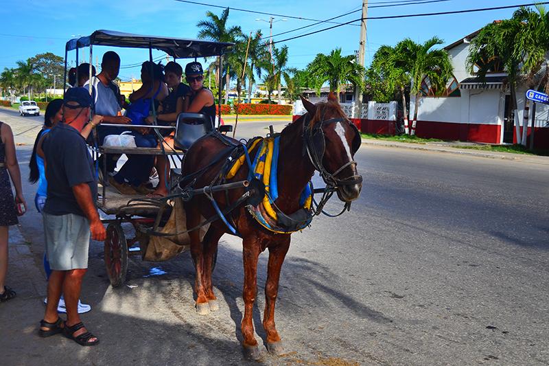 обществнный транспорт Варадеро