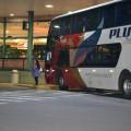 автобус компании Pluma