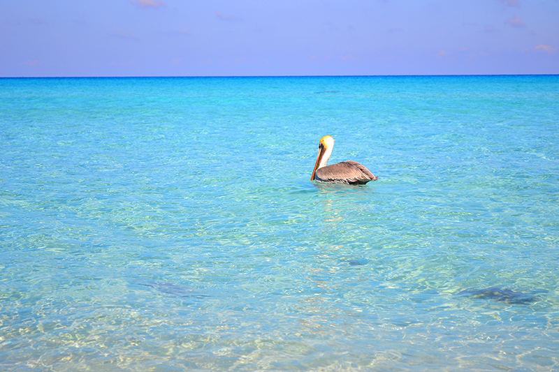 пляжи Varadero на Кубе