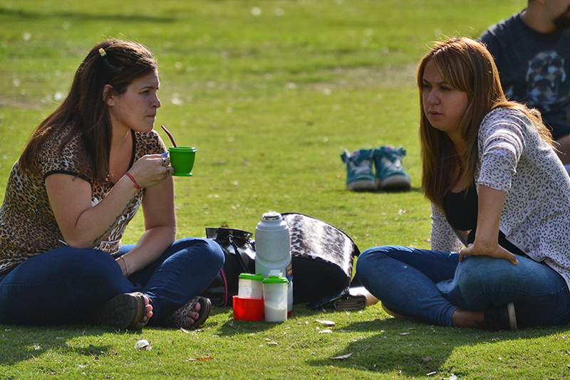 Argentines drink mate in the Park