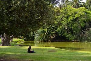 Park Jardin Botanico