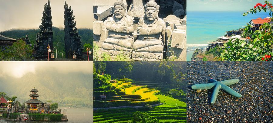 collage indonesia