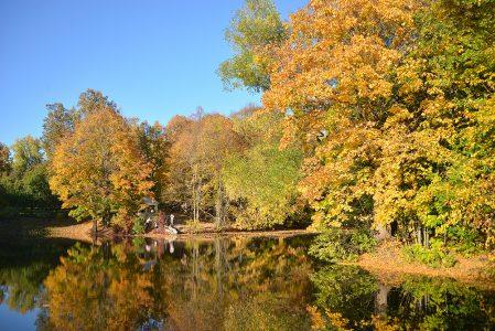 Autumn in Boldino. Russia.